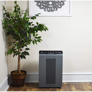 Winix 5300-2 Air Purifier with True HEPA, PlasmaWave & Odor Reducing Carbon Filter @ Amazon