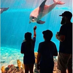 Save up to $25 off San Antonio Sea World tickets @Sea World
