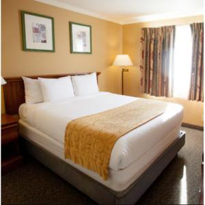 Groupon - 太浩湖天堂村森林套房度假酒店大促, $79起,最多可住6人
