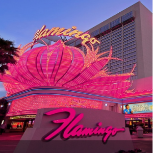 Vegas.com - 拉斯維加斯 Flamingo 火烈鳥酒店特價,指定房型額外贈送$30餐飲消費額度