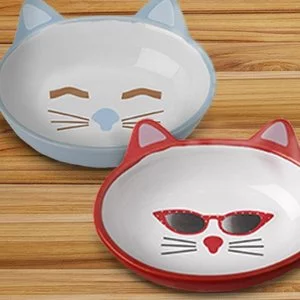 Walmart Select Cat Bowls on Sale