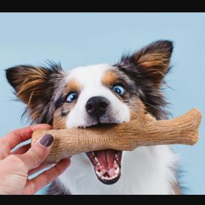 Скидка 20% на рационы Pro Plan, Cat Chow и Dog Chow! @ Zoomag