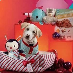 Petco 圣诞节宠物专场 毛孩子的圣诞礼物买起来