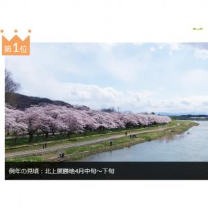 JR新幹線・特急列車で見に行く桜・お花見ツアー・旅行特集