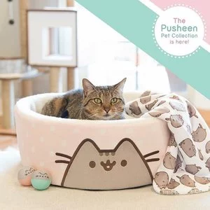 Pusheen Cat Products on Sale @ Petco