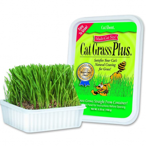 Cat-About by MiracleCorp Gimborn Single Cat Grass Plus, 60-Gram @ Amazon
