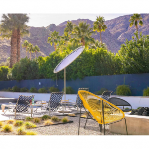 Desert Jungle, Palm Springs From  US$665  PER NIGHT @Plum Guide