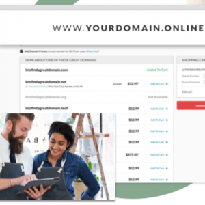 Domain name from $2.99/year @Netfirms