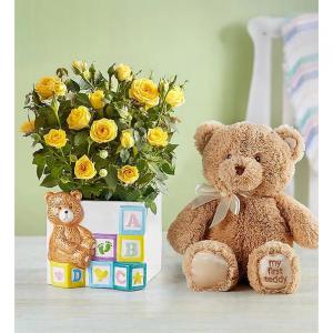 1800FLOWERS 官网新生儿祝贺鲜花及礼品促销 欢迎每一个天使宝宝的到来
